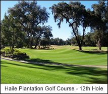 Haile Plantation Golf Course - 12th Hole